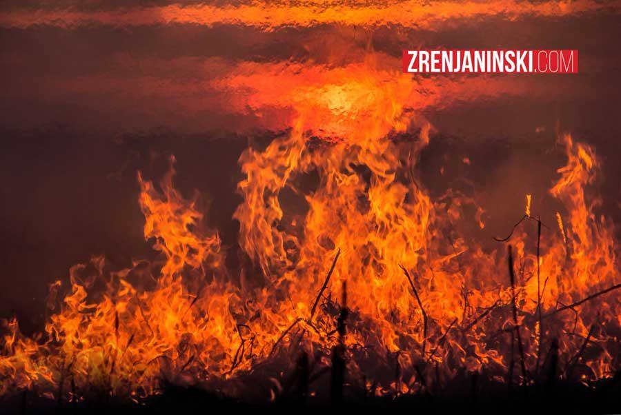 požar šteta