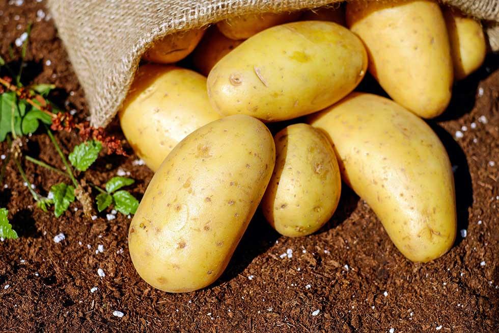 Skočila cena krompira