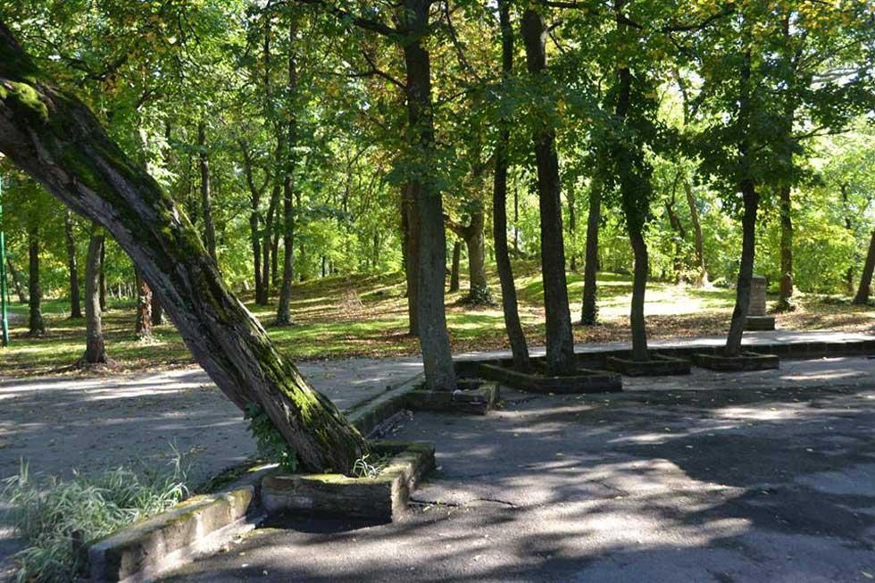 rekonstrukcija pešačkih staza
