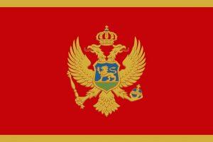 tribina stvaranje crnogorske nacije