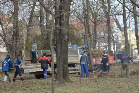 komunalci uređuju parkove