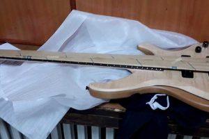 luksuzna gitara