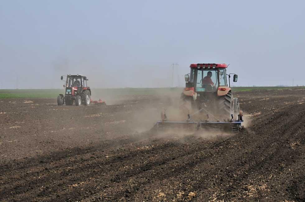 poljoprivreda novi bečej