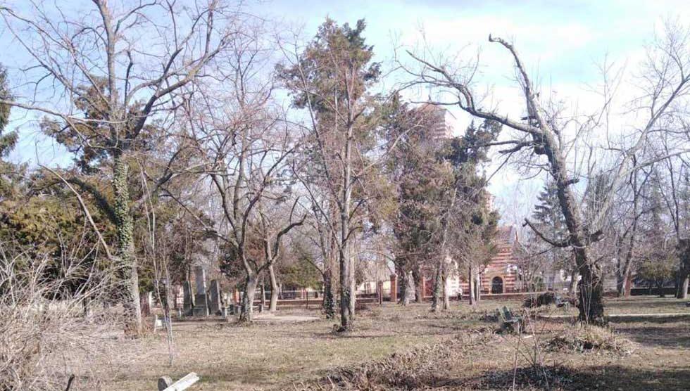 park u orlovatu