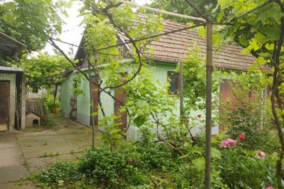 kuća zeleno polje