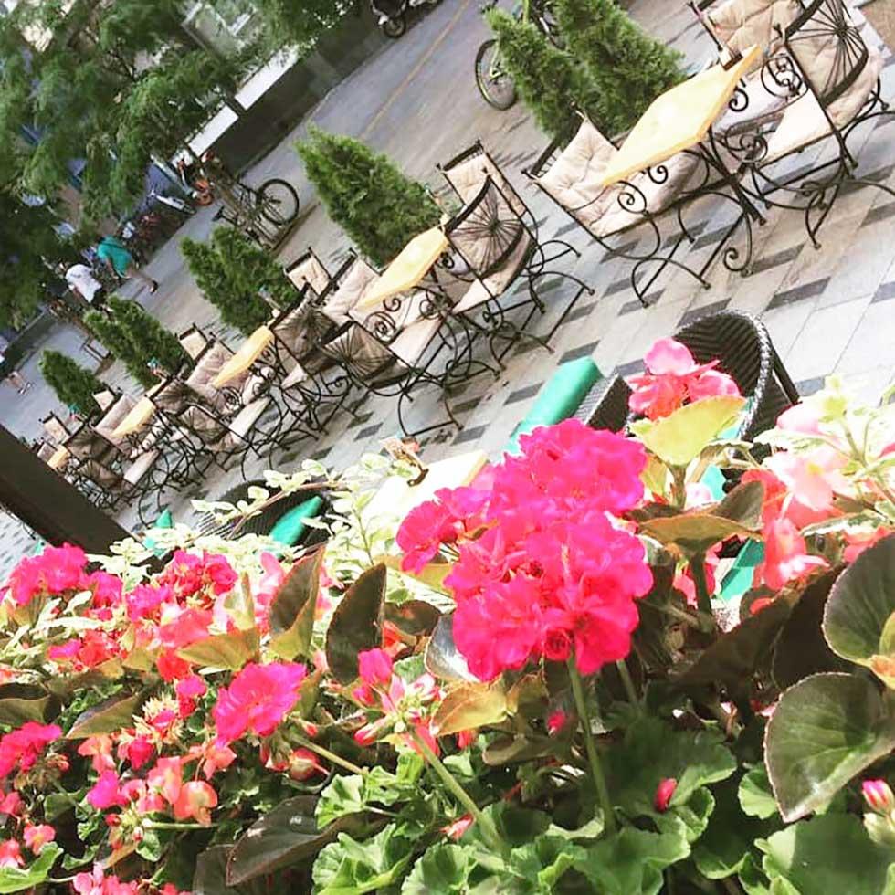 bašta hotela vojvodina