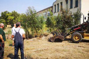 ekološka akcija