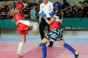 kung fu turnir
