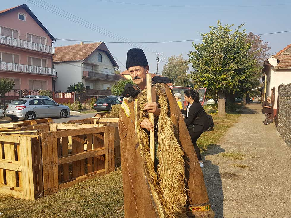 pastirski dan u mužlji
