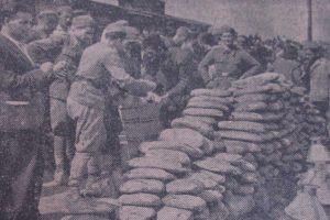 sto godina od dolaska prvih kolonista