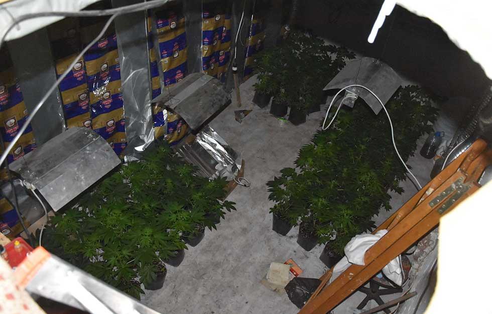 laboratorija za proizvodnju marihuane