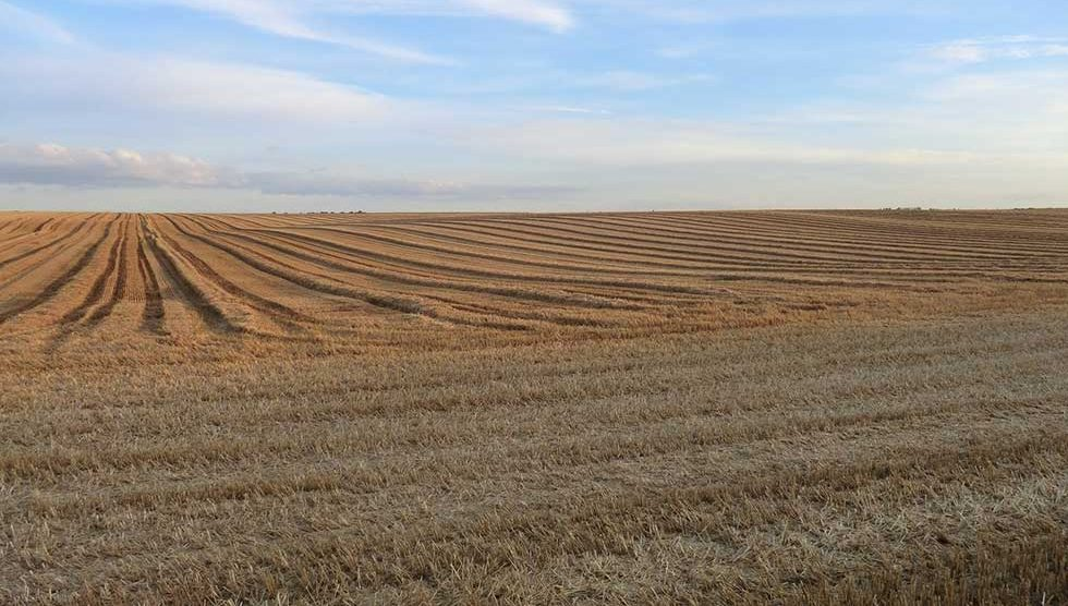 licitacija za zakup poljoprivrednog zemljišta