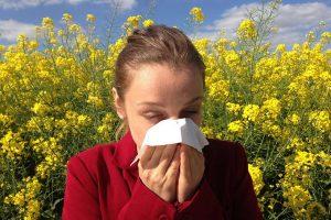 merenje polena