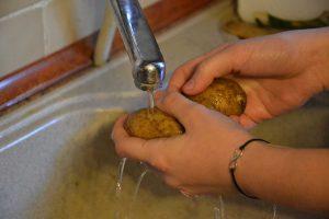 pranje namirnica