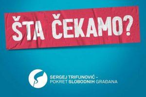 sergej trifunović - pokret slobodnih građana
