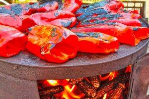 gazdinstvo damjanov proizvodi papriku