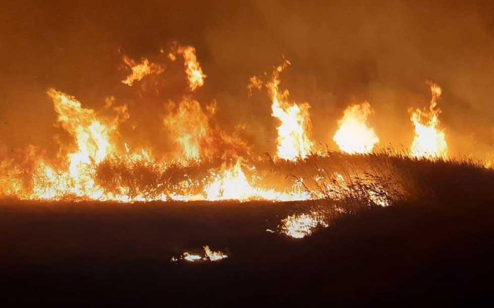 požar u rezervatu slano kopovo