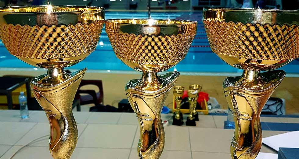 prvenstvo vojvodine u plivanju