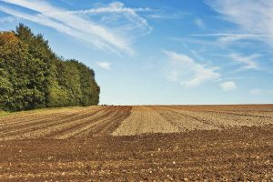 agencija za restituciju vratila poljoprivredno zemljište