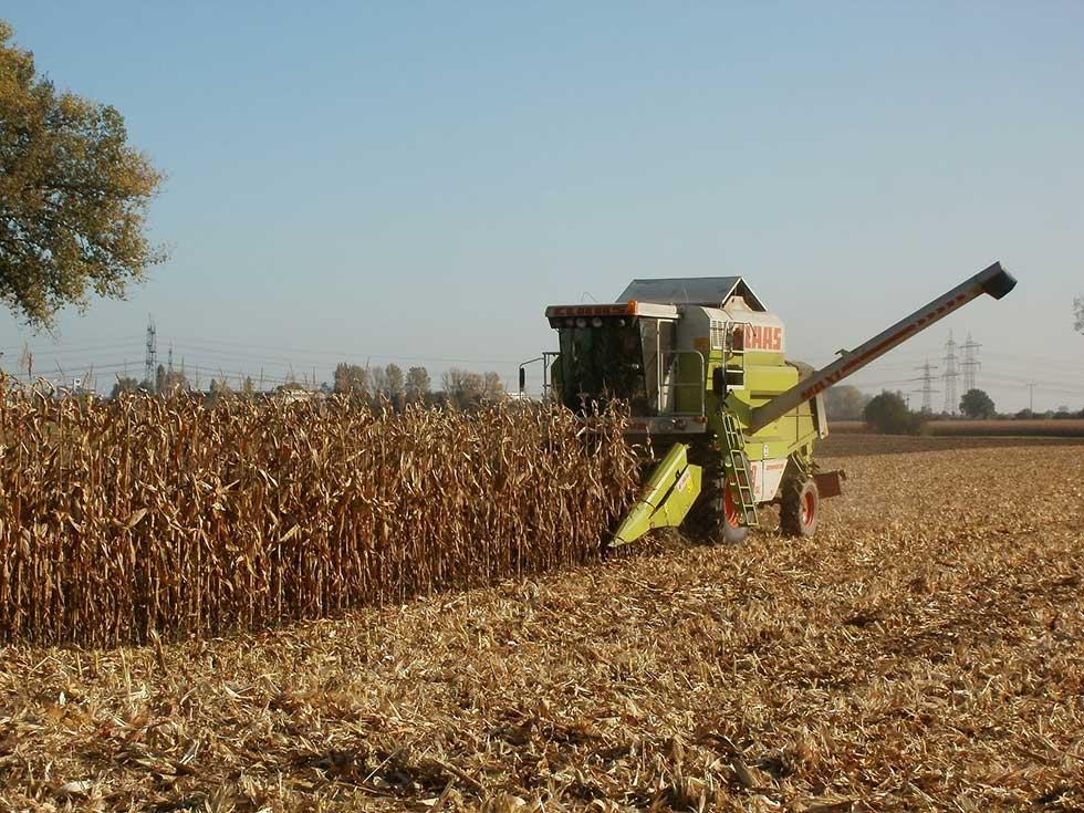 cena poljoprivrednog zemljišta