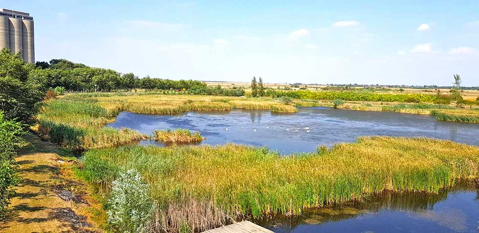 jezero čestereg