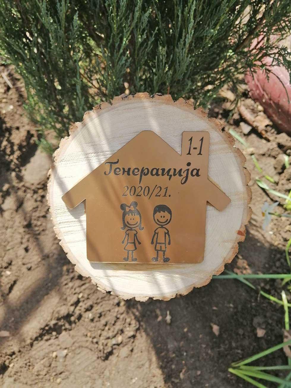 drvo generacije