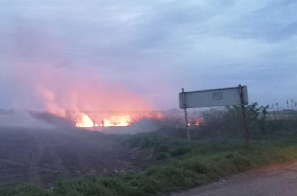 požar u ataru banatskog despotovca