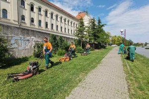 služba održavanja zelenih površina